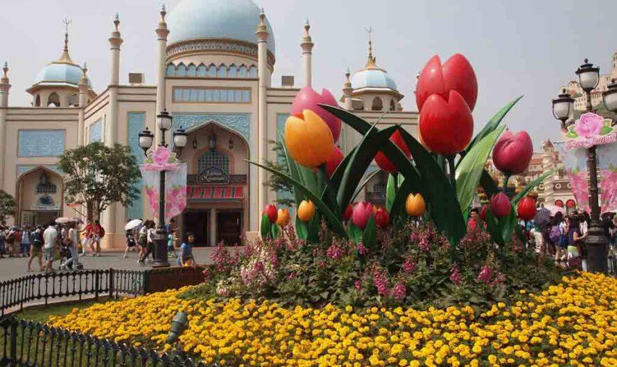 15 Interesting Fun Facts – Everland Theme Park, South Korea