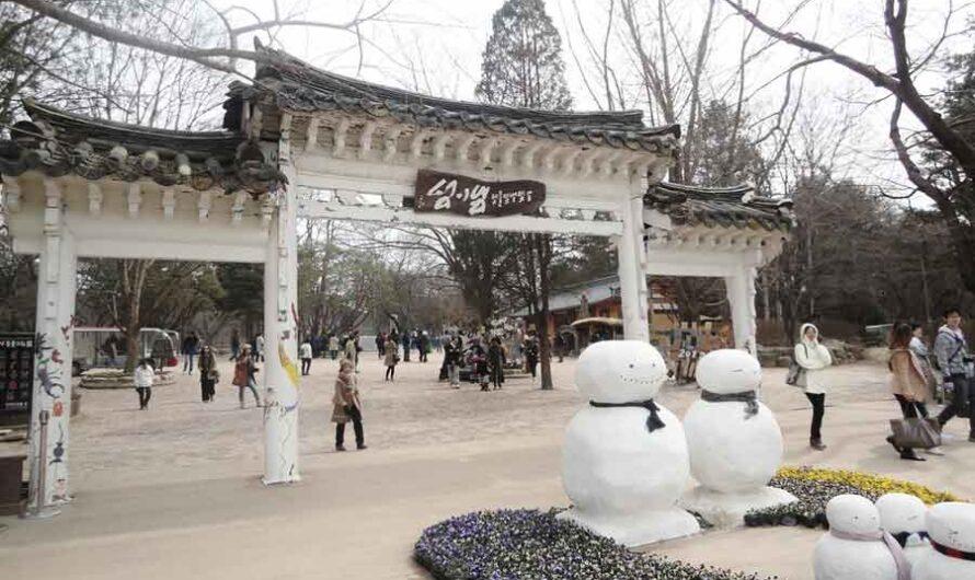 25 Interesting Fun Facts About Nami Island South Korea